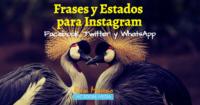 frases para instagram facebook twitter estados whatsapp mas de trescientas frases bonitas motivadoras amor exito ingles espanol amistad trabajo